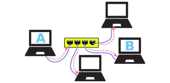 Networking Basics: Knowledge Test! Quiz
