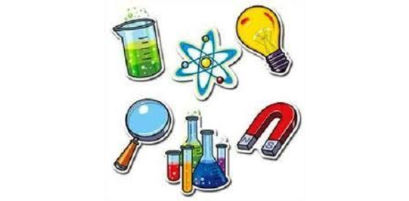 Quiz: 7th Grade Science Questions On Genetics!