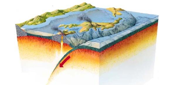 Plate Tectonics Quiz Trivia! Exam