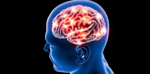 Brain And Its Capabilities Quiz