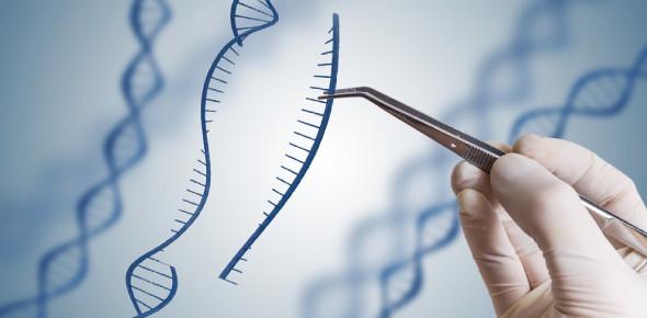 Genetic Engineering MCQ: Quiz!