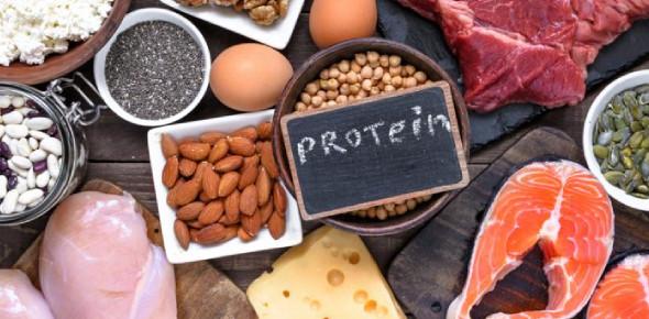 Proteins Trivia Facts: MCQ Quiz!