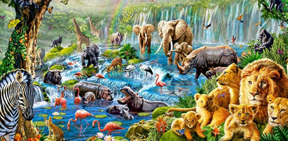 Which Animal You Are? Quiz!