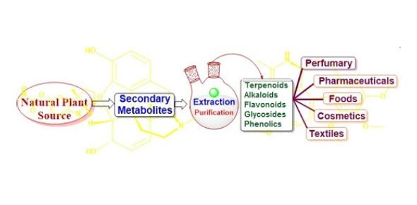 Secondary Metabolites Trivia Quiz!