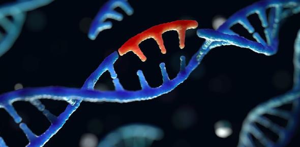 The Genetic Mutation Test Quiz! Trivia