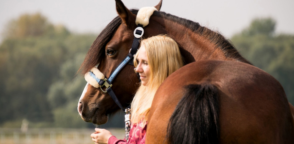 Are You And Your Horse A Good Match?