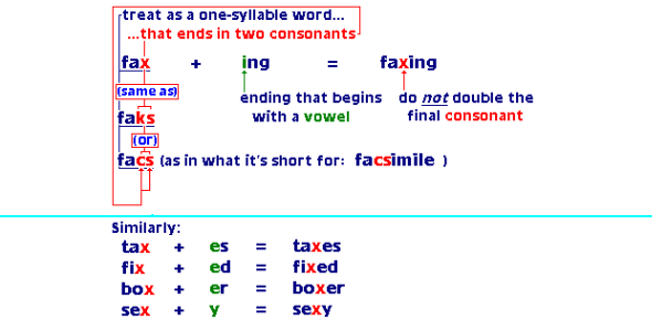 Words That End With X: Vocabulary Quiz!