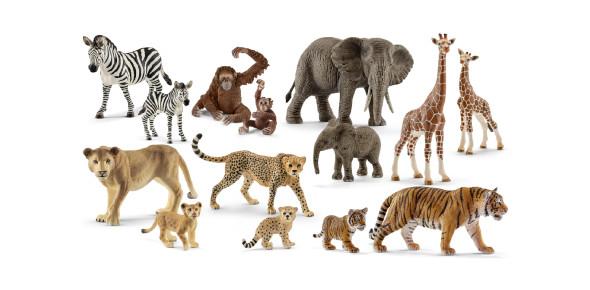 Wild Animals Test! Interesting Quiz! Trivia