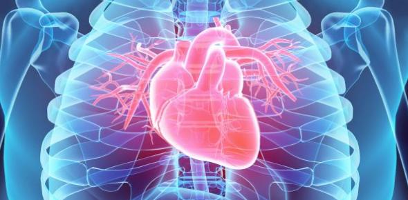 A Quiz On Cardiomyopathy For Pros