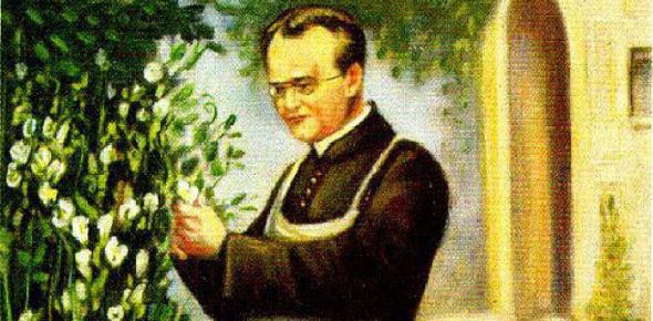 Gregor Mendel Facts Quiz: Trivia!