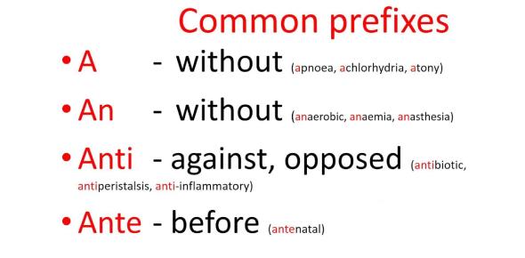 A Test On Prefixes: Grammar Quiz