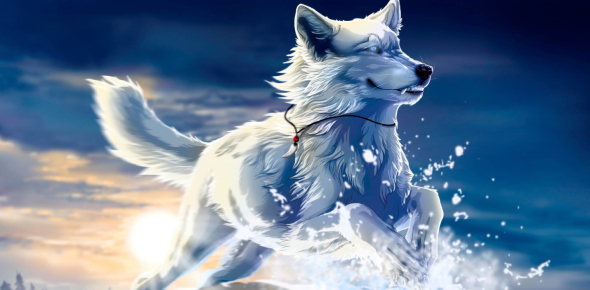 How Would You Look Like As An Anime Wolf?