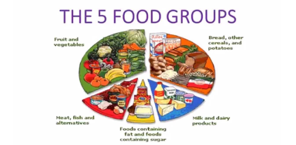 Food Groups Basics: Quiz Questions & Answers