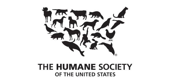 FSOT : United States Society Questions! Trivia Quiz