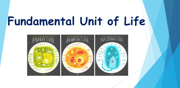 Cell: The Fundamental Unit Of Life! Quiz