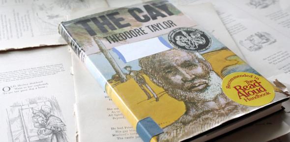 The Cay Novel Test Questions! Trivia Quiz