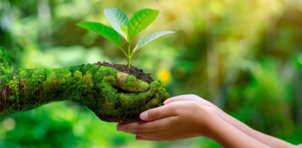 World Environment Day Quiz! MCQ