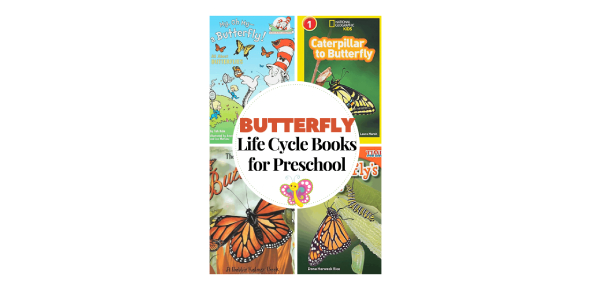 Do You Have The Knowledge Of Butterfly Life Cycle?