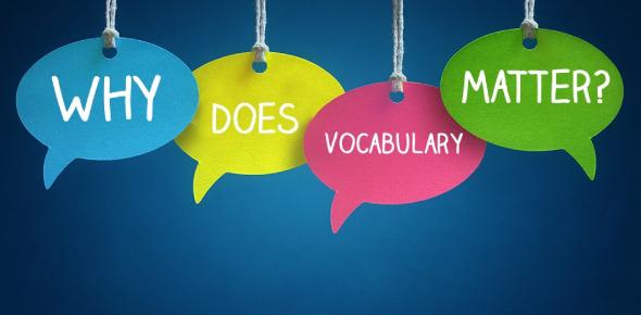 Vocabulary: MCQ Quiz!