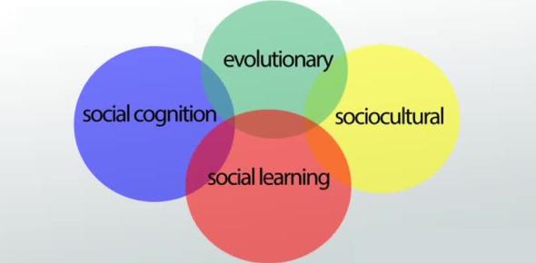 Sociological Perspectives Trivia Quiz!
