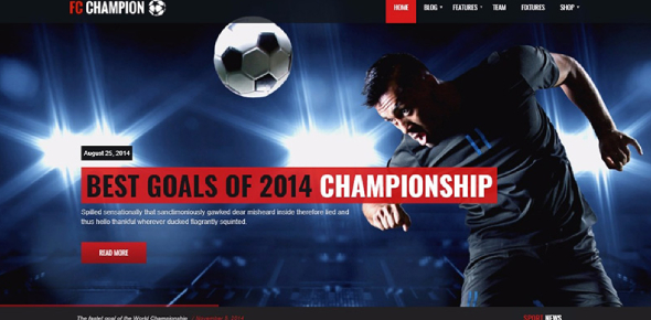 The Sports World Website: MCQ Quiz