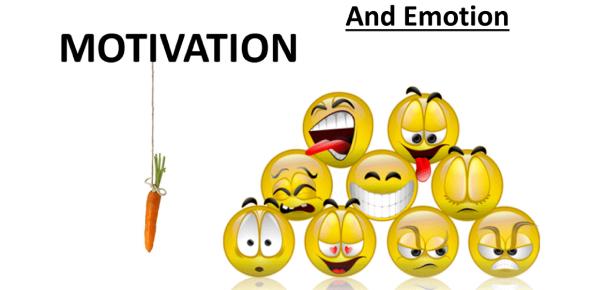 Motivation And Emotion: Psychology Quiz!