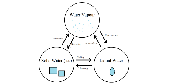 Phases Of Water Gizmo