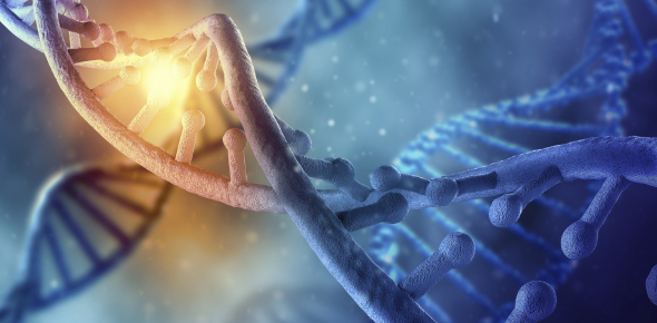 Molecular Biology: DNA Replication Quiz!