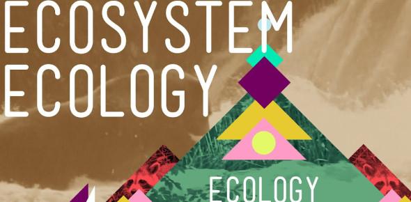 Basic Trivia Knowledge About Ecosystem Ecology!