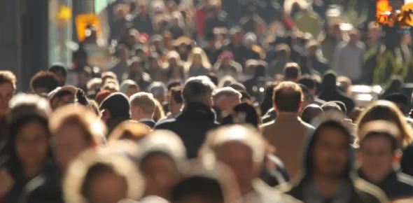 Ecology Quiz: Population Reguation And Density Dependent Factors!