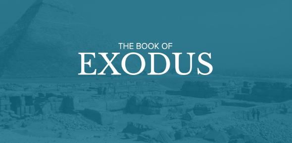 How Much You Know Book Of Exodus? Trivia Quiz