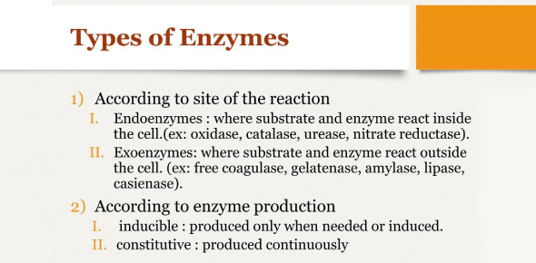 Types Of Enzymes! Trivia Questions Quiz