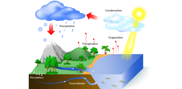 What Do You Know About Hydrological Cycle? Trivia Quiz