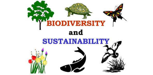 Unit 2: Sustainability And Biodiversity: Multiple Choice