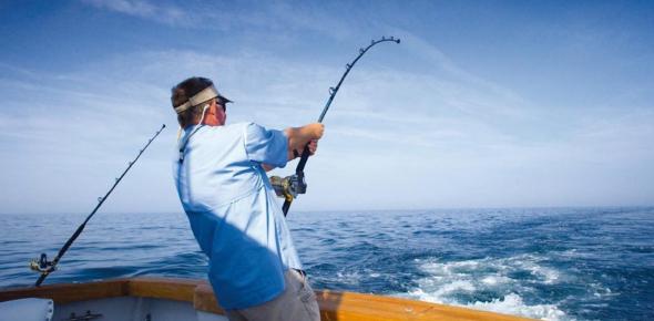 Sea Fishing Quiz