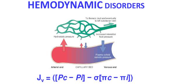 Week 4 Patho Quiz - Hemodynamic Disorders