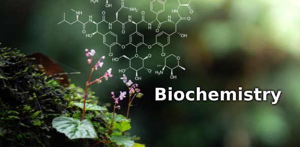 Practice Test On Biochemistry! Trivia Quiz