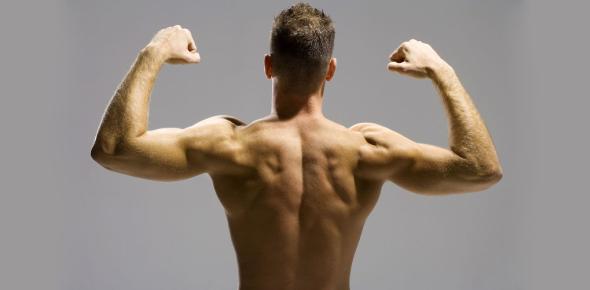 Deep Back Muscles Questions! Trivia Quiz