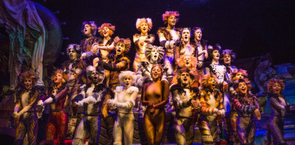 Which Kind Of Cat From The Musical Cats Are You?