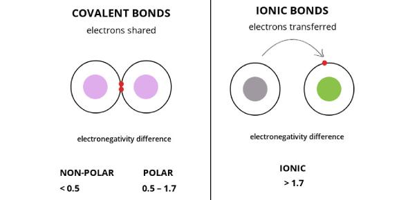 Ionic And Covalent Bonding Practice Test! Quiz