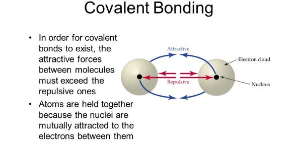 Take The Covalent Bonding Practice Quiz!