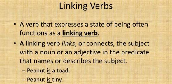 English Grammar Quiz On Linking Verbs!