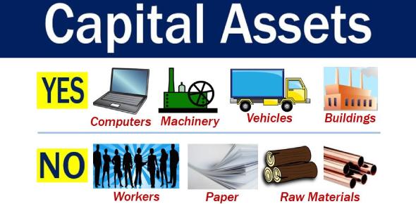 Capital Assets Quiz: Trivia Questions!