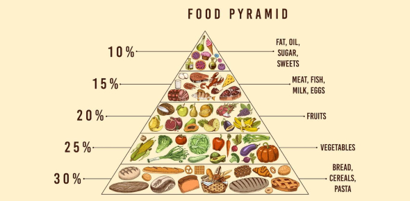 The Food Pyramid Quiz: Trivia!