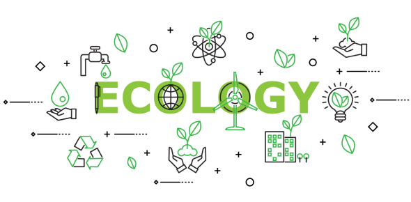 Ecology Quiz: Test Your Basic Knowledge!