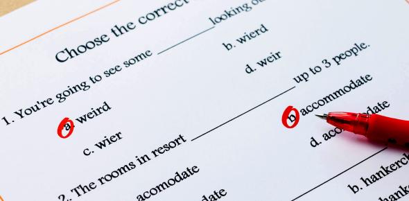 Basic English Grammar Quiz For Elementary Level!