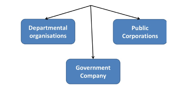Quiz: Forms Of Business Organization