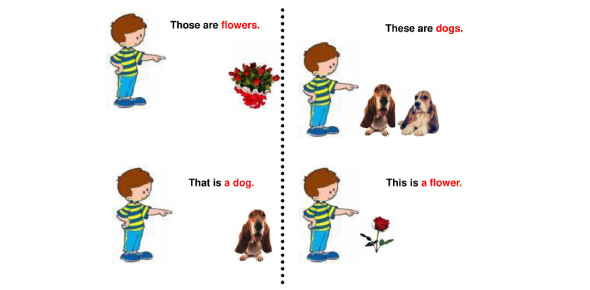 Demonstrative Pronouns Quiz: This That, These And Those