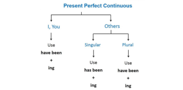 Soal Present Perfect Continuous Tense