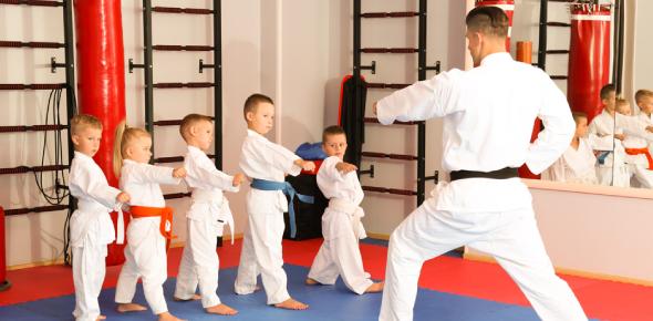 What Martial Art Should I Take?